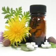 Homeopathy vs Naturopathy
